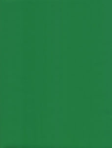 Solid Green Glossy Giftwrap